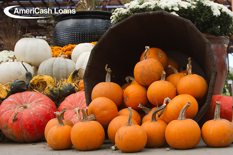 Fall Festivals in Charleston, SC
