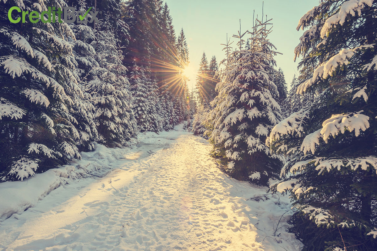 Plan Your Winter Getaway on a Budget!